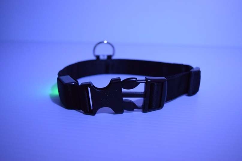 Led Dog Collar Led Glow In The Dark Dog Collars