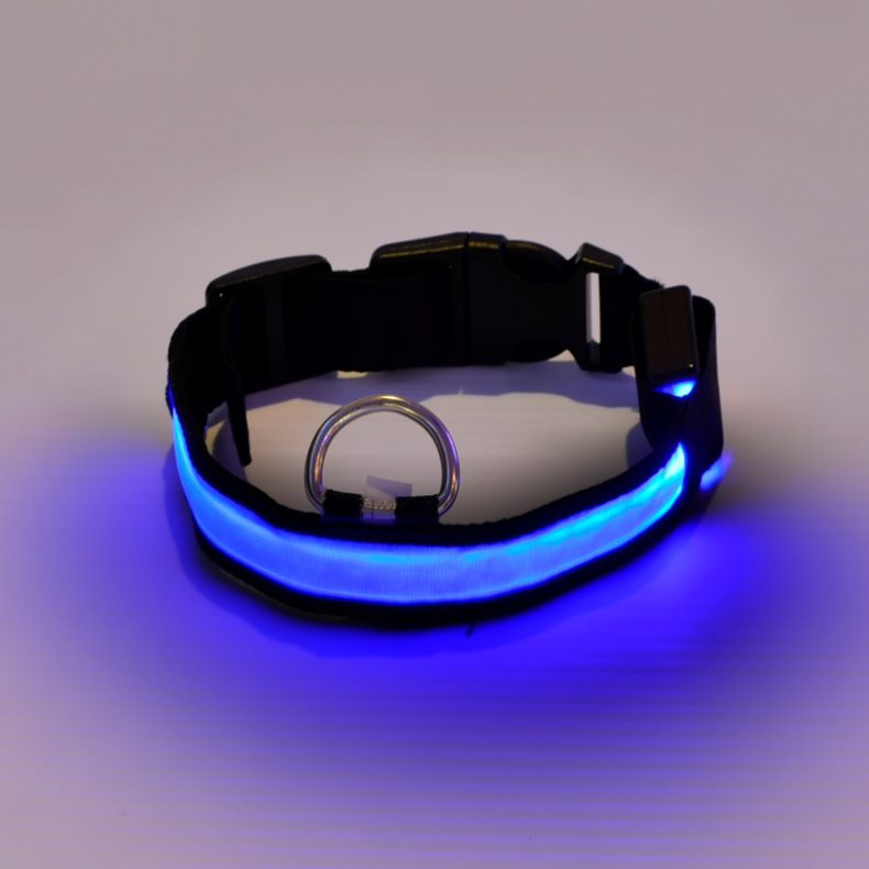 dog collar blue