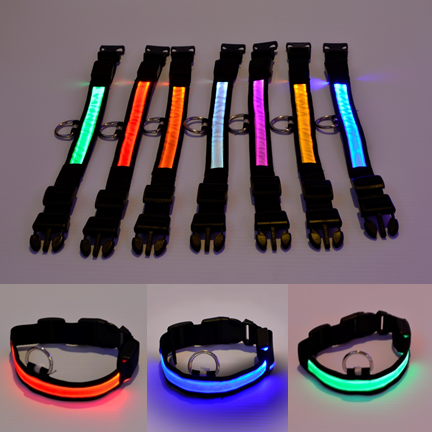 Light Up Dog Collars