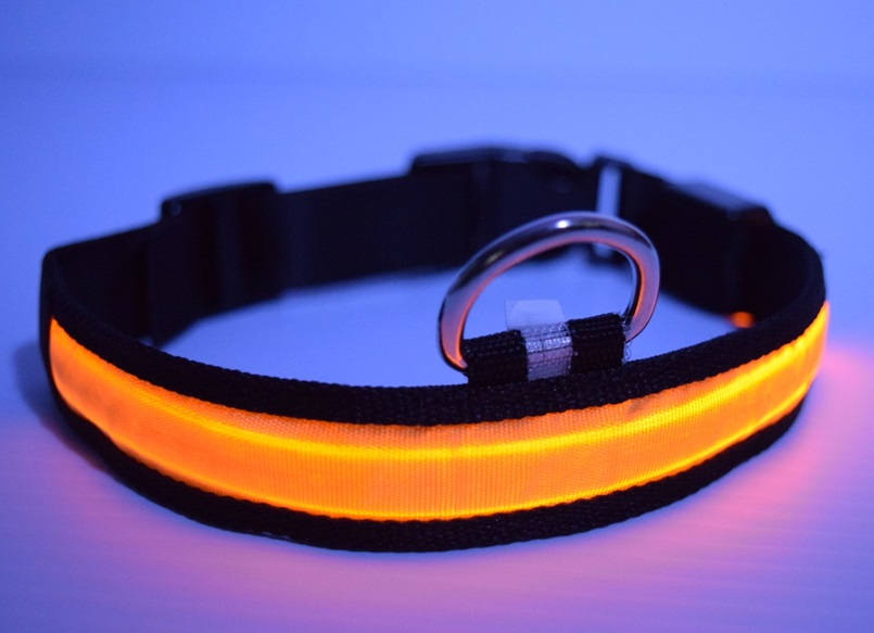 led dog collar yellow 2