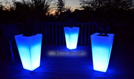 Light up your backyard garden in a unique way